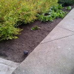 irrigation_gallery01
